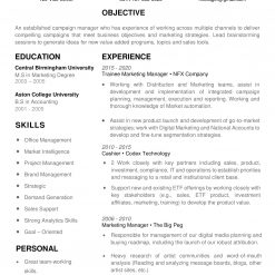 IDAA00054-resume-template-0006-white-1-page-Marketing-Manager-no-pic_V2-1