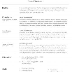 IDAA00059-resume-template-0008-white-1-page-Sales-Manager-no-pic_V1-1