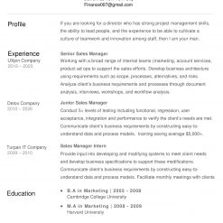 IDAA00060-resume-template-0008-white-1-page-Sales-Manager-no-pic_V2-1