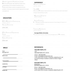 IDAA00083-Resume-Template-0013-minimal-1-Page-Graphics_Designer-No_pic