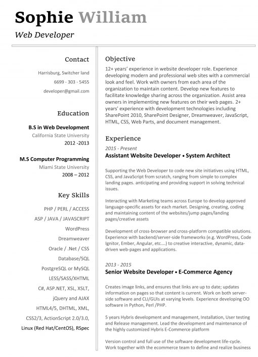 IDAA00088-resume-template-0003-white-1-page-Developer-no-pic_-1