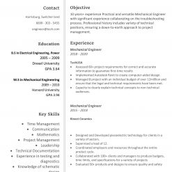 IDAA00089-resume-template-0003-white-1-page-Web_Developer-no_pic-1