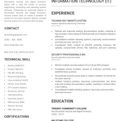 IDBB000026-resume-template-white-1-page-IT-no_pic