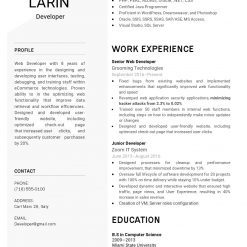 IDBB000030-resume-template-white-1-page-Developer-no_pic
