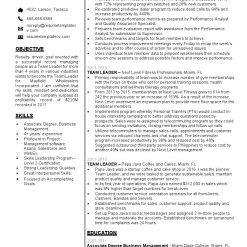 IDBB000051-resume-template-white-1-page-Team-Leader-no_pic