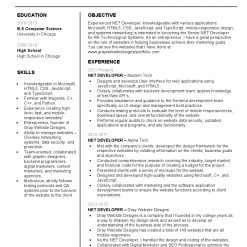 IDBB000062-resume-template-white-1-page-Net-Developer-no_pic