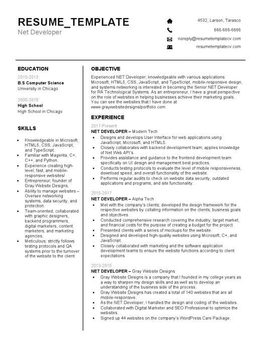 IDBB000062-resume-template-white-1-page-Net-Developer-no_pic