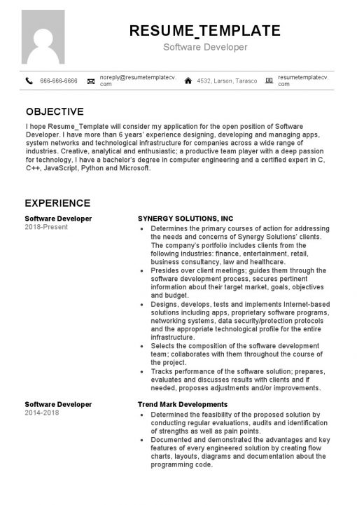 IDBB000067-resume-template-white-2-page-Softtware-Developer-with_pic1