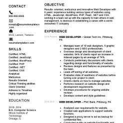 IDBB000068-resume-template-white-2-page-Web-Developer-with_pic1