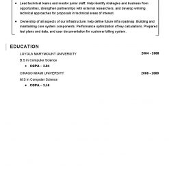 IDBB000070-resume-template-white-2-page-Computer-Programmer-no_pic2