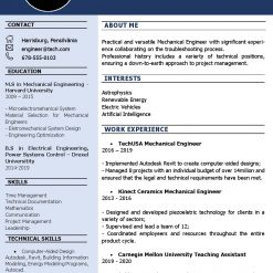 IDBB000092-resume-template-color-1-page-Engineer-with_pic